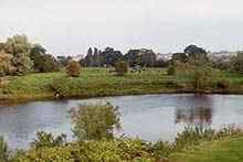 Hereford 2
