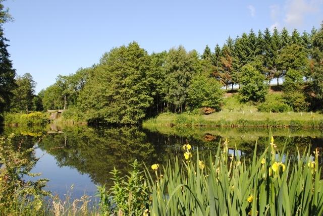 lakeside_retreat_25