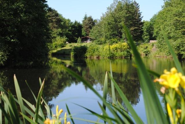 lakeside_retreat_7