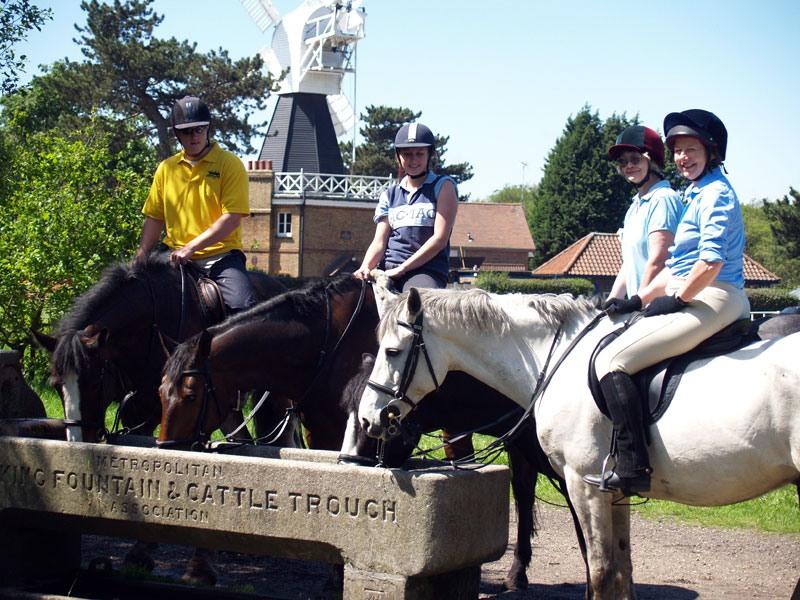 wimbledon_village_stables_6