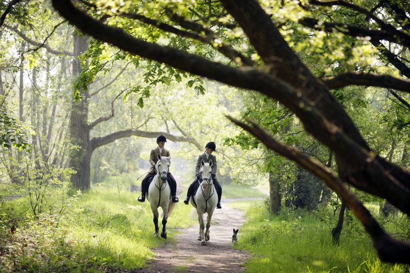 wimbledon_village_stables_7